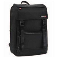 Рюкзак Samsonite SAFTON CS4*09 005